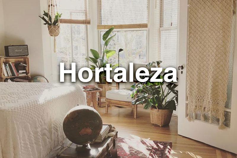 Habitación con plantas