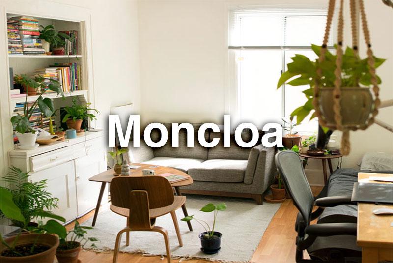 Salón con plantas y sofá